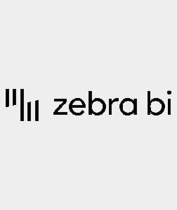 Zebra BI Logo (Partner) 252x300